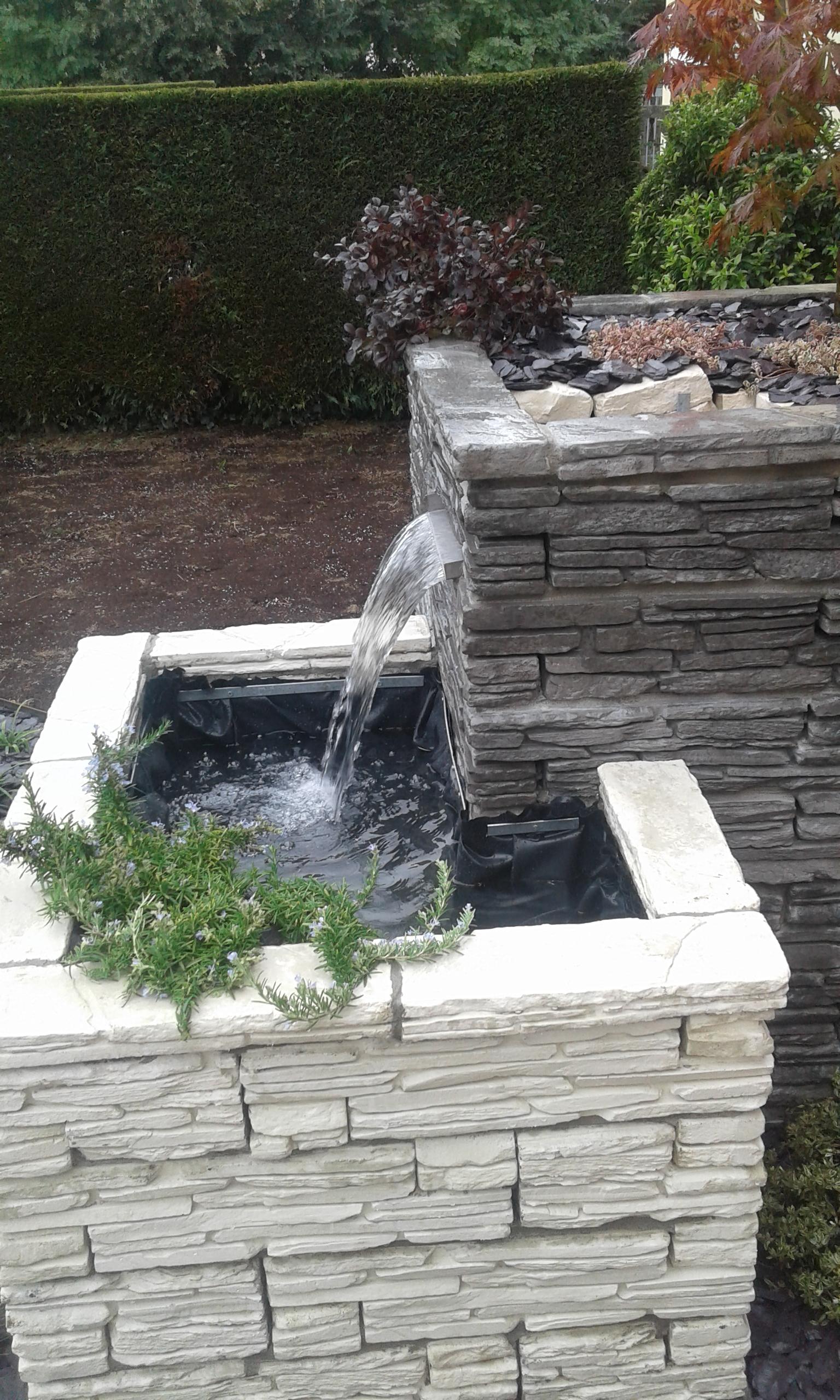 contatti realizzazione vaso con acqua Vivai Pistore