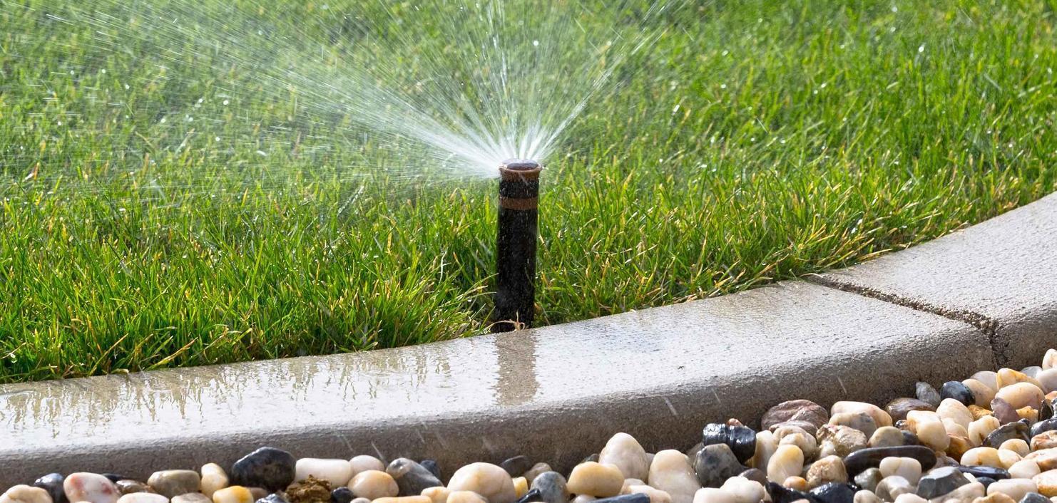 Irrigazione vivai pistore for Irrigazione giardino