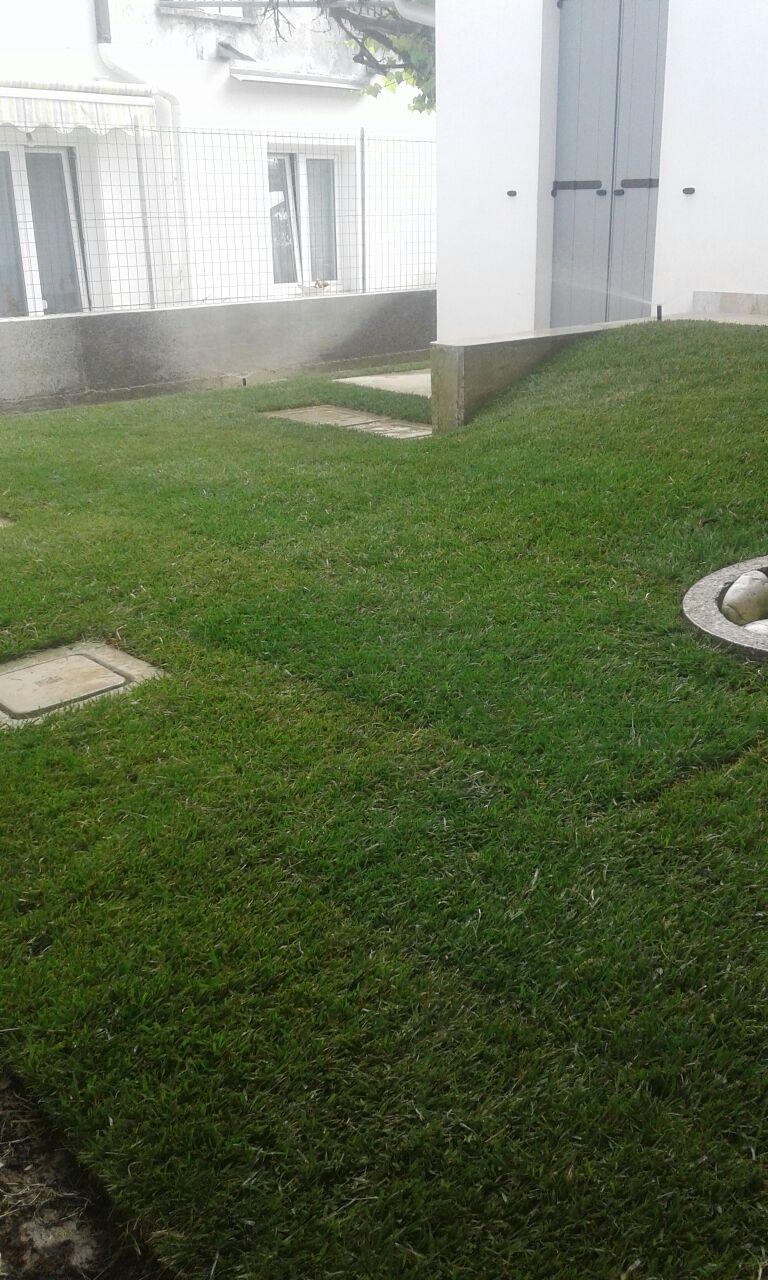 realizziamo giardini Vivai Pistore