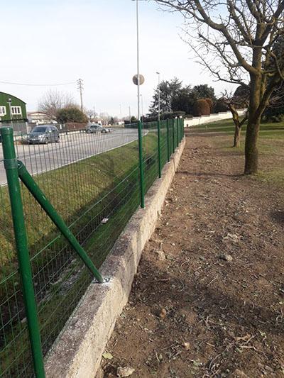 Rimozione siepe e nuova recinzione