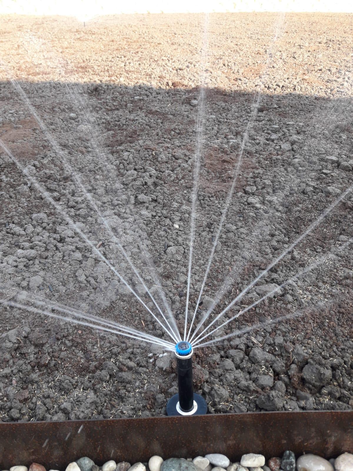 collaudo irrigazione Vivai Pistore