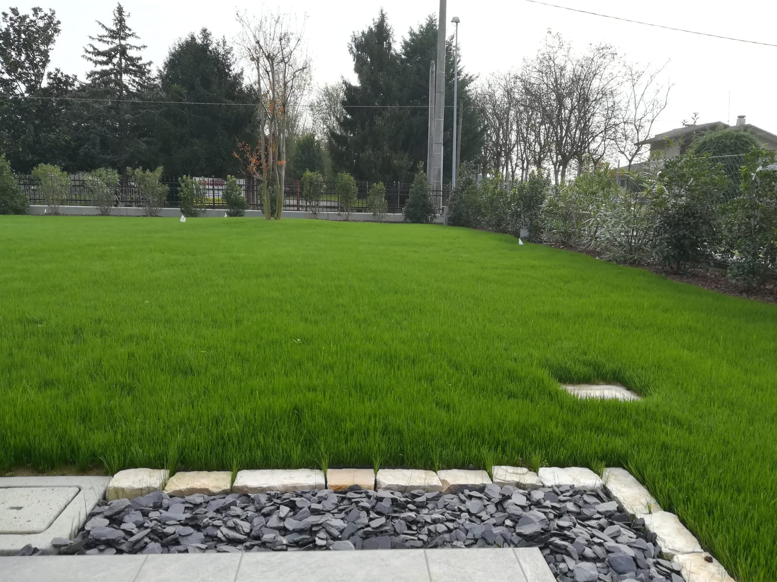 giardino Vivai Pistore